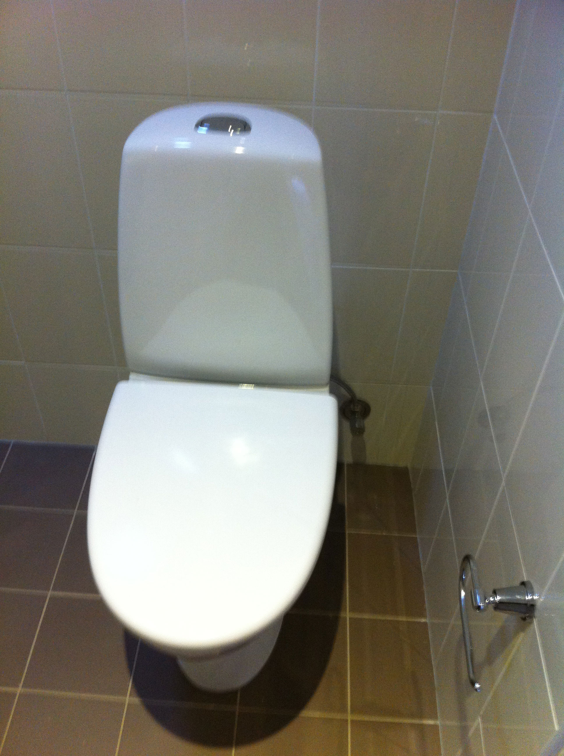 Upgraded Dual Flush Toilet Suite